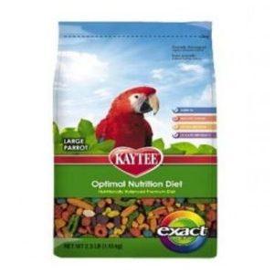 Birds Food